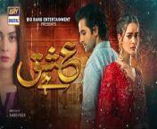 Ishq Hai is a love story of a boy who is madly in love with a girl. Going against all odd to achieve his love.<br/><br/>Writer: Rehana Aftab<br/>Director: Aabis Raza<br/><br/>Cast: <br/>Minal Khan,<br/>Danish Taimoor,<br/>Babar Ali,<br/>Saba Faisal,<br/>Farah Nadeem,<br/>Saifi Hasan,<br/>Mahi Baloch,<br/>Sajjad Paul,<br/>Azekah Daniel,<br/>Saima Qureshi,<br/>Faraz Farooqui,<br/>Mahenur Haider and others.