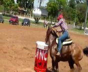 Barrel Racing<br/>Três Tambores no EquitaLyon<br/>Brésil<br/>cheval courageux<br/>brave horse